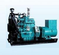 Biomass Power Generator