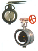Heavy Duty Butterfly Valve