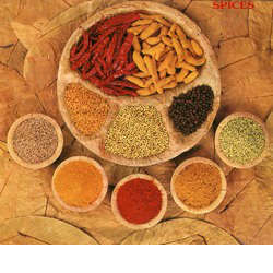 Indian Blended Spices