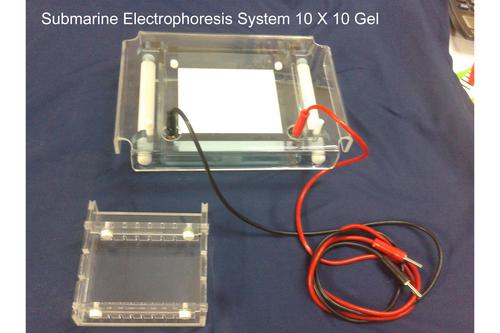 Submarine Electrophoresis