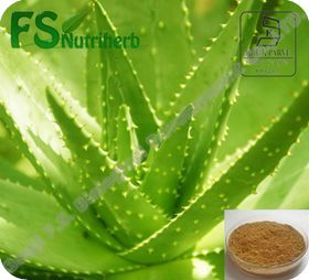 Natural Aloe Extract