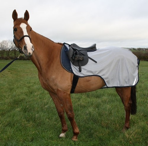 Buzz-Off Riding Rug at Best Price in