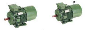 Standard Three Phase Induction Motors