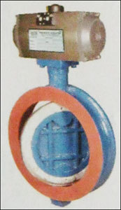 Water Type Off - Set Disc Butterfly Valve