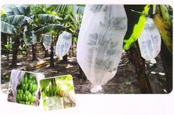 Nonwoven Fruit Covering