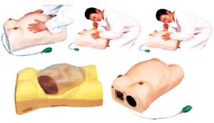 Maternity Examination Model (Gd/Fw2)