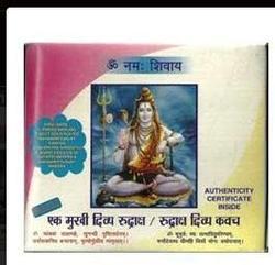 Ek Mukhi Rudraksha And Kavach