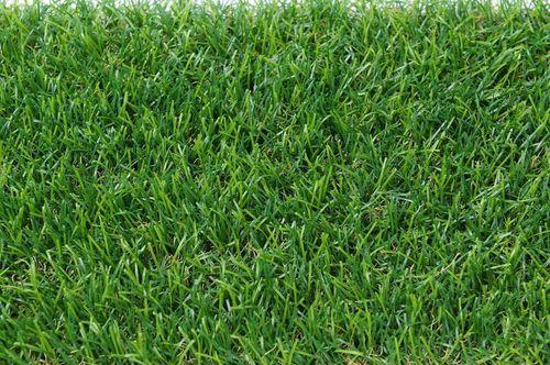 Artificial Grass in  District Centre (Janakpuri)