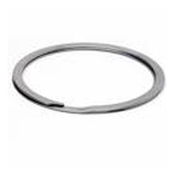 Double Coil Ring