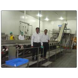 Frozen Food Processing Machine
