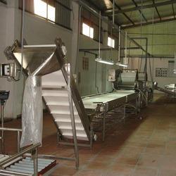 Gherkin Bulk Line Processing Machine