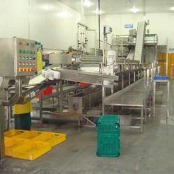 Vegetable Processing Line