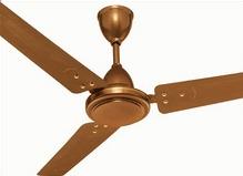 Golden Brown Fan