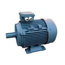 Dual Voltage Motors