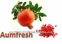 Freeze Dried Pomegranate Kernels