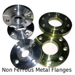 Non Ferrous Metal Flanges
