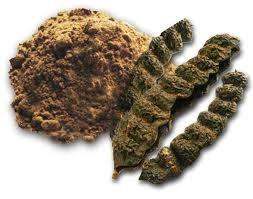 Natural Shikakai Powder