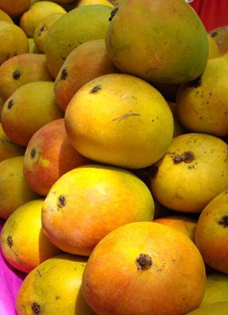 Alphanso Mangoes
