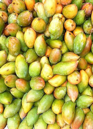 Totapuri Mango In Bengaluru, Totapuri Mango Dealers