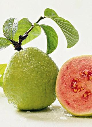 Guava Pulp (White/Pink)