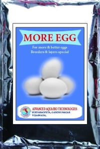 More Egg Poultry Feed Supplement