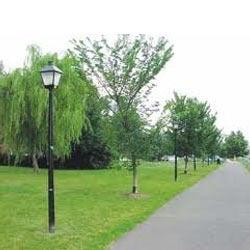 Park Light Poles