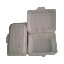 Biodegradable Pack Lunch Box (450 Ml)