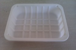 Biodegradable Rectangular 7 Inch Tray