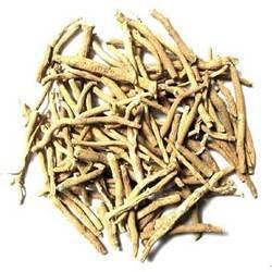 Fresh Ashwagandha Root