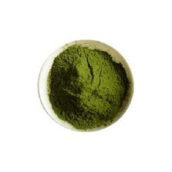 Gurmar Extracts
