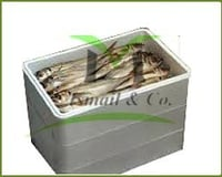 Fish Thermocol Boxes
