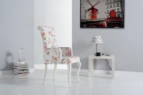 Designer Chair (TC-9187)