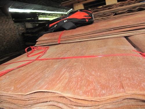 Keruing Core Plywood