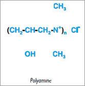 Polyamine Polylectrolytes