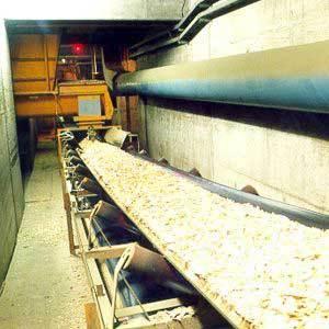 Chemical Resistant Conveyor Belt in  Sarangpur