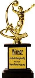 Wooden Base Souvenir Trophy