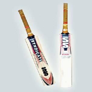 S Dynamic Power Cricket Bat
