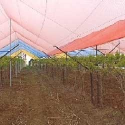 Agricultural Shade Netting