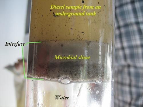Diesel Contamination Control in   Kadavanthra