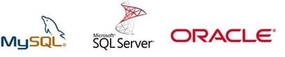 Database Data Recovery Service
