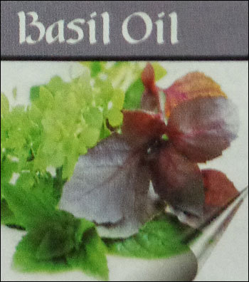 Holy Basil Plant Oil