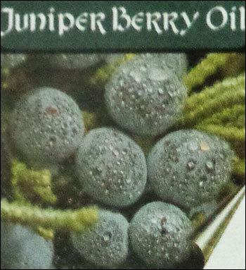 Pure Quality Juniper Berry Oil