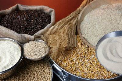 Agri Commodity Trading Service in Btm 2nd Stage, Bengaluru