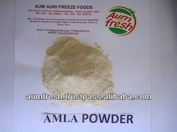 Freeze Dried Organic Amla