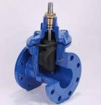 Rubber Coating Of Resilient Seated Gate Valve