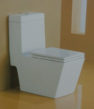 Kubix Single Piece Water Closet
