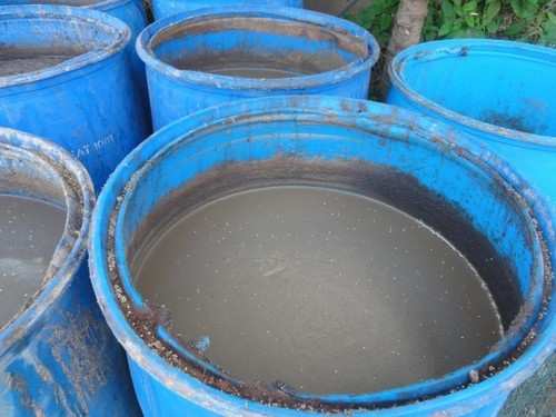 Brown Panchagavya Fertilizer - Plant Growth Promoter