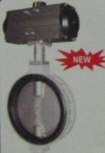 Kitz Butterfly Valve With Pneumatic Rotary Actuator