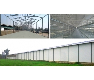 Automated Poultry Farm Shed
