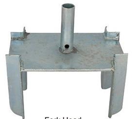 Forkhead